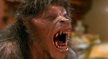 American Werewolf in London still