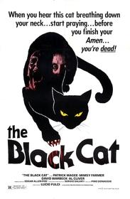 Black Cat 1981 poster