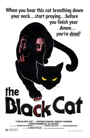 mood of the black cat