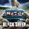 Black Sheep 2006 poster