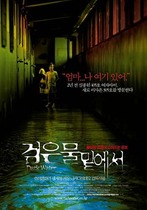 Dark Water 2002 Korean poster