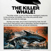 Orca: The Killer Whale poster