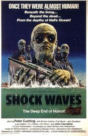 Shock Waves poster