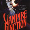 Vampire Junction book