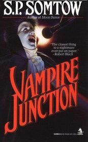 Vampire Junction book